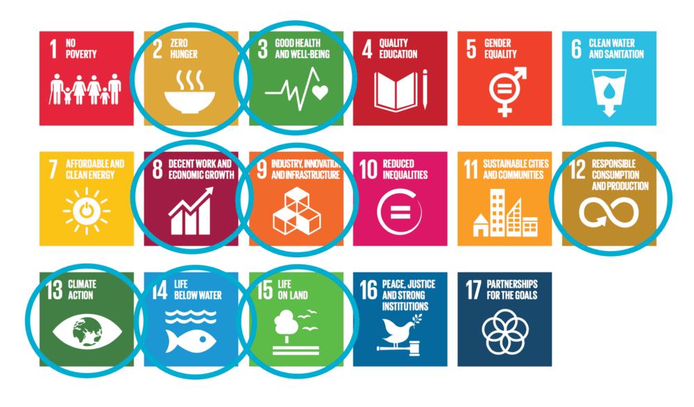 FNs bærekraftsmål Aquantum Leap